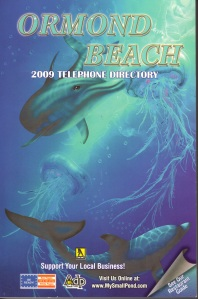 ORM 2009 cover001
